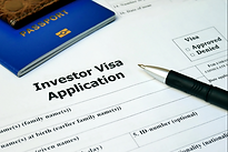 Investor Visa.png