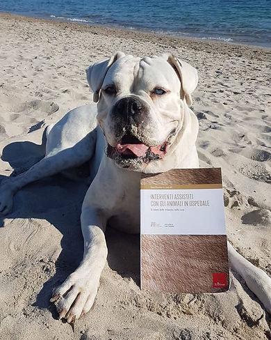 Poldo presenta il libro
