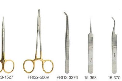 Dissection Practice Kit II