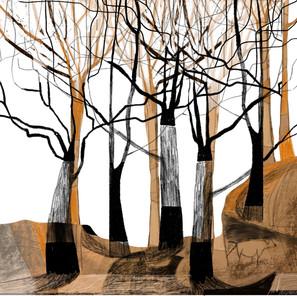 Ilustración_sin_título 7.jpg