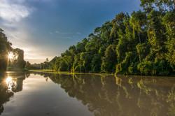 Kinabatangan river sunset