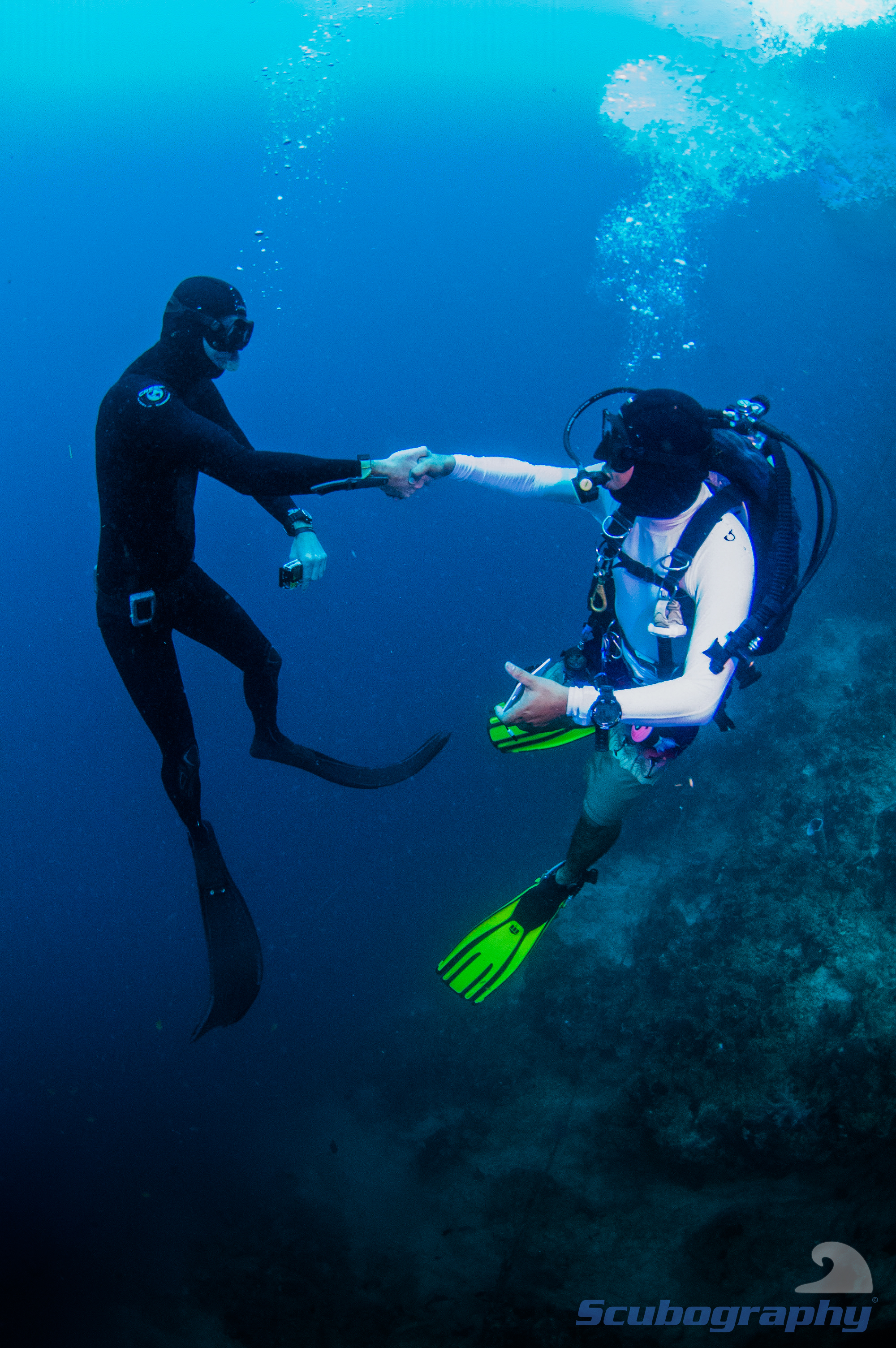 Freediver and diver