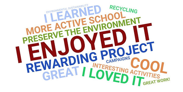 Students' opinion of the project_evaluat