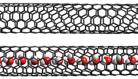 Quasi-phase transition spotted in water-filled carbon nanotube