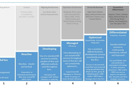 The Seven Dimensions of Law Firm Business Development Maturity