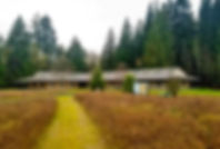 Vipassana-3.jpg