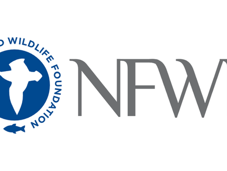 MBM Receives Grant from National Fish and Wildlife