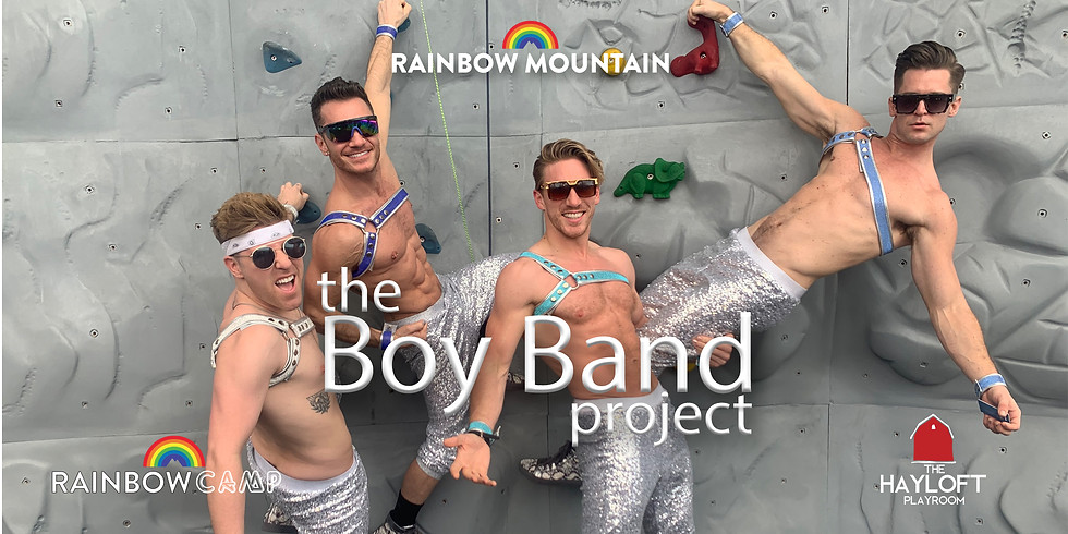 The Boy Band Project