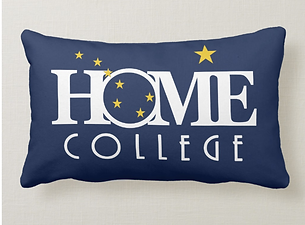 college alaska pillow.PNG