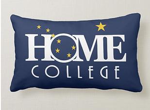 college alaska pillow.PNG