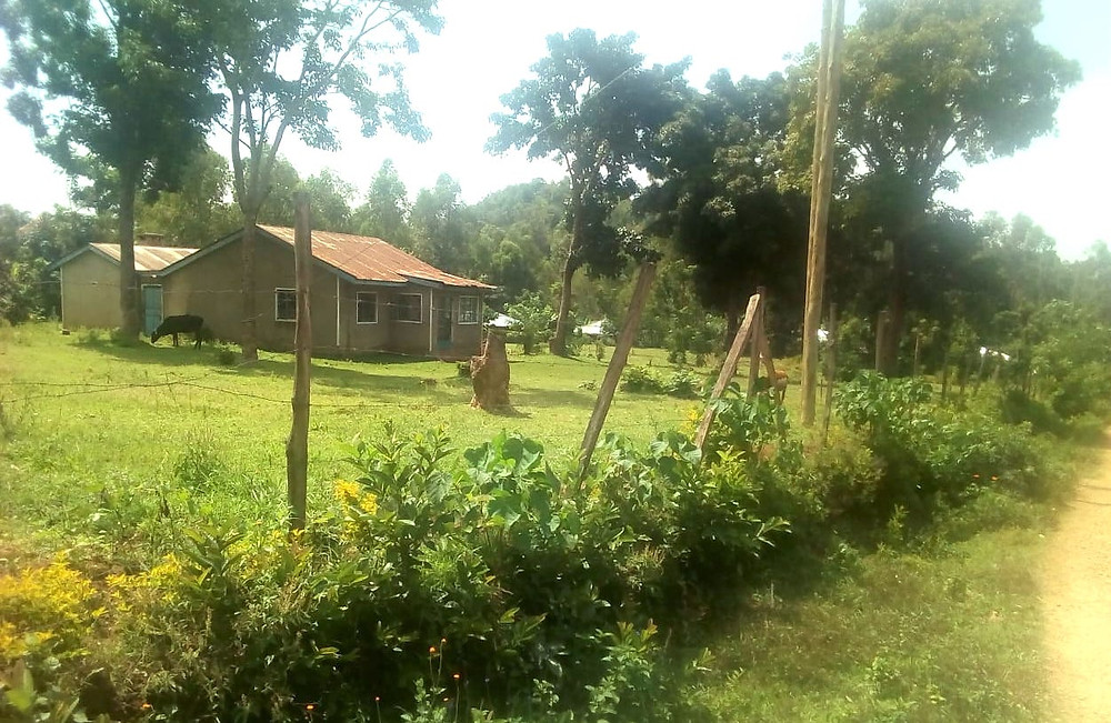 Village of Hope and Love new site