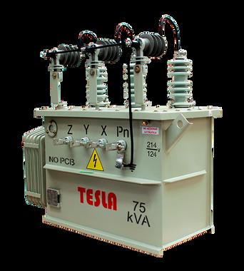 Transformador Trifásico Convencional 75 kVA Serie 15/1.2kV