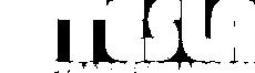 logo tesla 2021.png