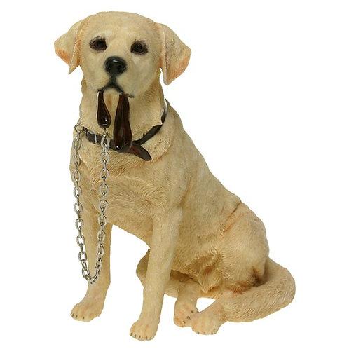 Walkies-Golden Labrador & Lead