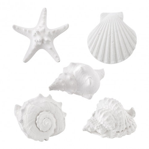 Marquise - Organza bag 8 assorted scented seashells