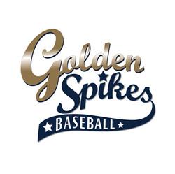 Golden Spikes Baseball Camps