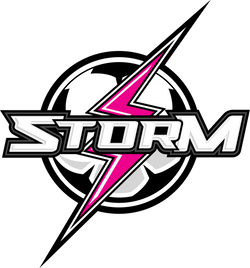 +storm_logo_final