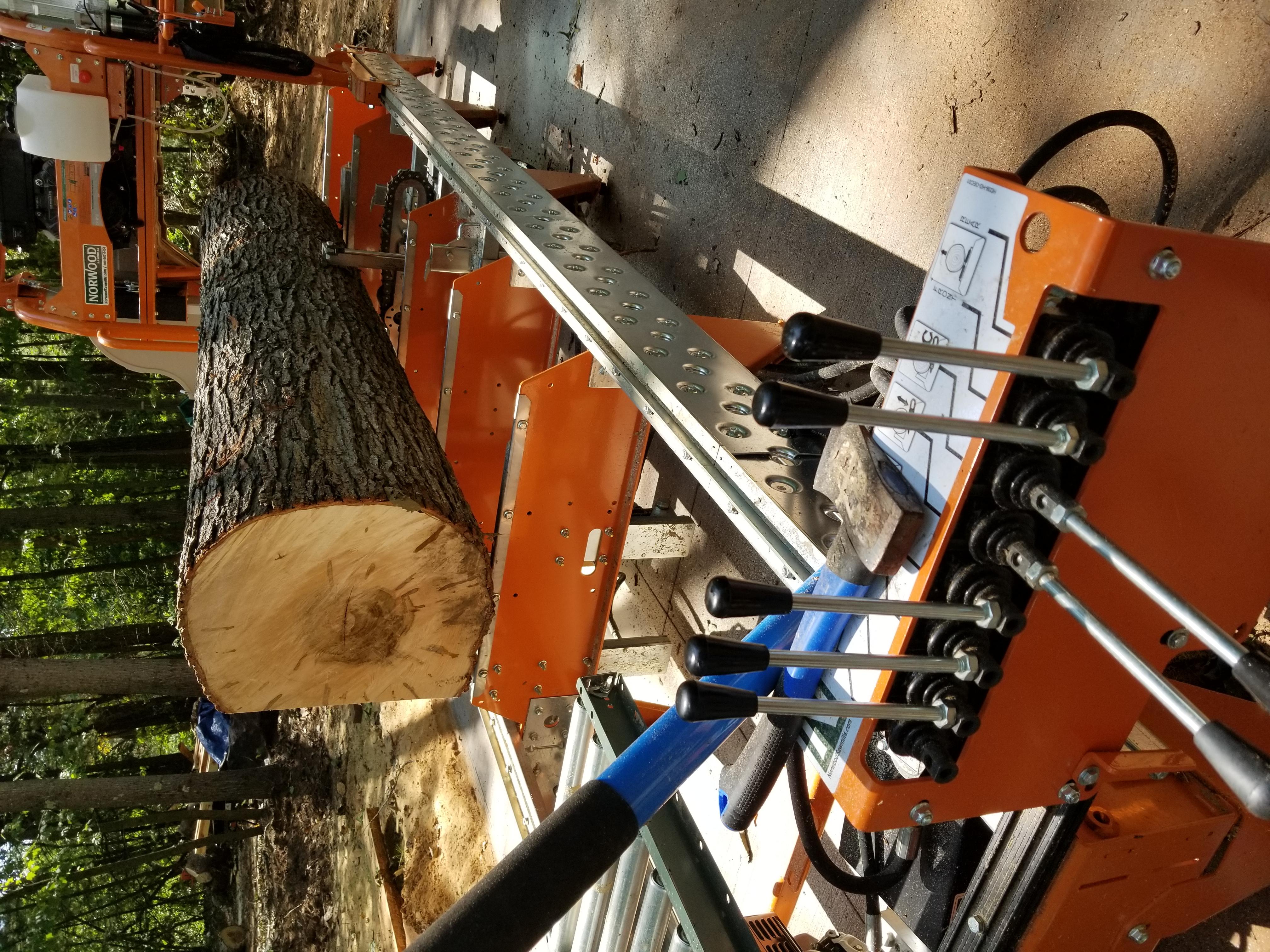 Maple on Norwood HD36