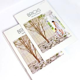 Bricks-Catalogue_Web.jpg