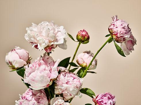 MEDIUM_SEACRET_FLOWERS_9.jpg