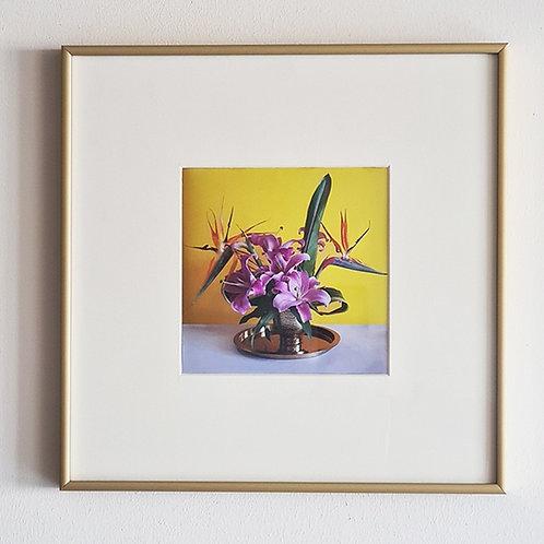 תמונת פרחים PARADAISU