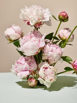 MEDIUM_SEACRET_FLOWERS_8.jpg