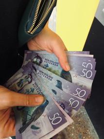 First NZ cash - let's buy a van!