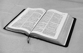 writing-book-read-word-white-reading-959