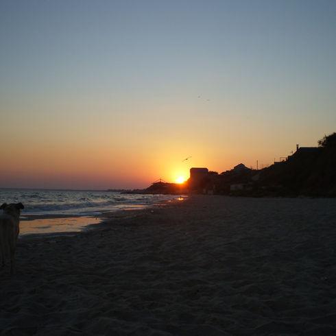 Sunset on the sea bord.JPG