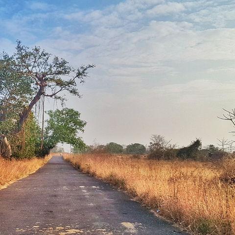 Amit Singh Desert Road