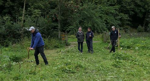 Friends of Deepdale Woods near Barnard Castle.jpg