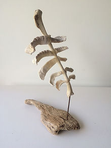 martine de jong, art, kunst, recidency, Skeleton schets, skelet schets