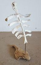 martine de jong, art, kunst, recidency, Skeleton schets, skelet schets