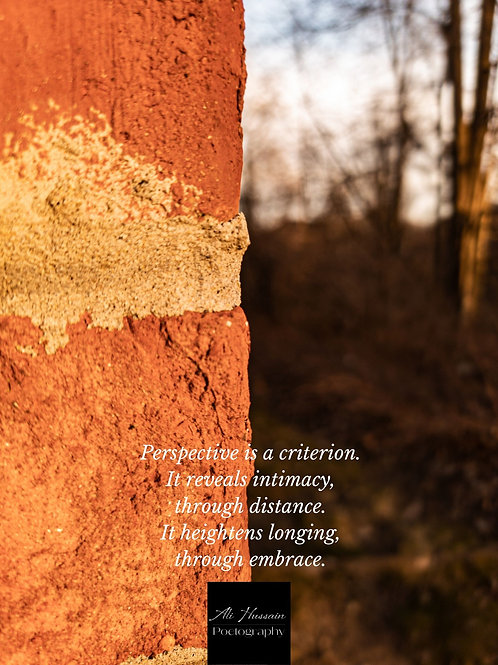 Between Red Brick and Nature