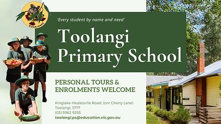 Toolangi Primay School (1).png