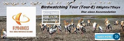 Birdwatching Tour(E Star Class) 6N-7D.jp