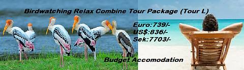 Birdwatching Tour(L Budget) 6N-7D.png