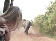 Female travelling alone_trip_travel_sril