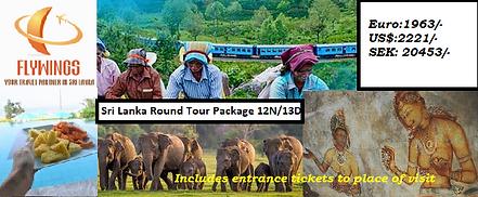 Sri Lanka Round Tour Package N2.png