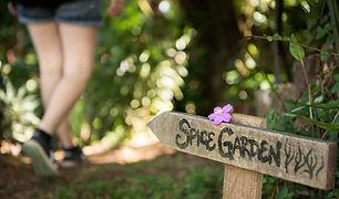 Spice Garden 1c.jpg