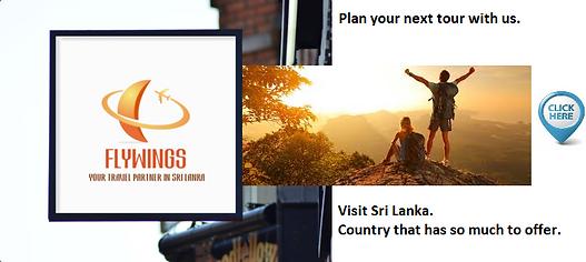 Visit Sri Lanka.png