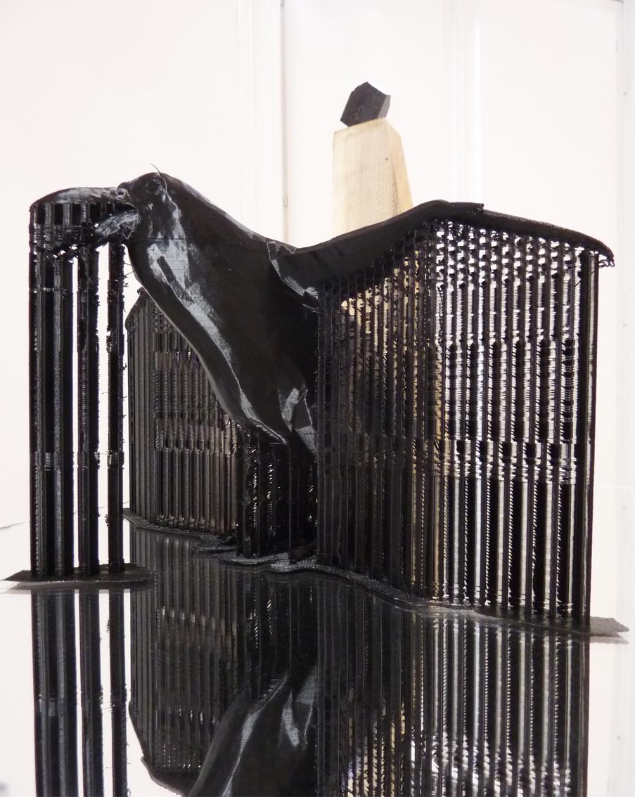 bird_3D