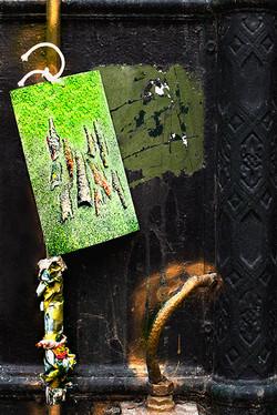 Ecorces d'arbres sur métal