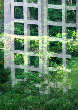 jungle urbaine bass def