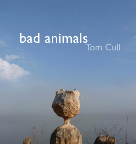 """Cover of Tom Cull's """"Bad Animals"""""""