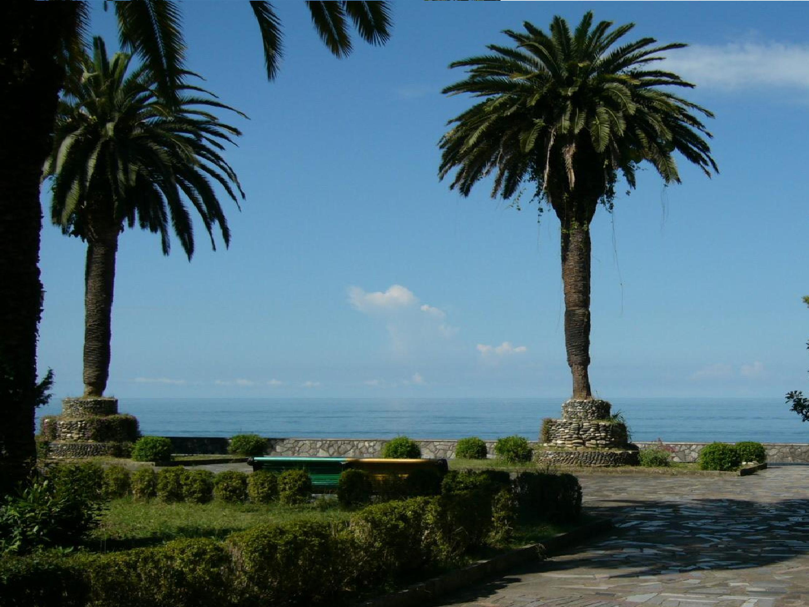 Приморский парк (3)