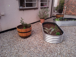 Wine Barrels & Galvanised Planters
