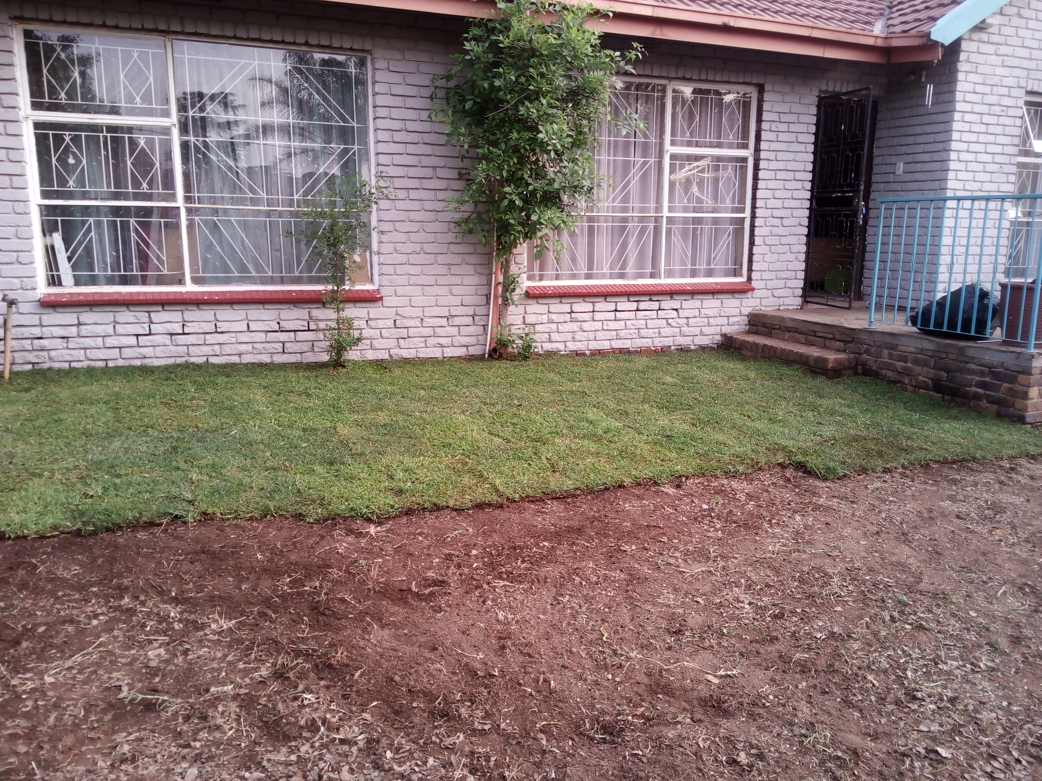 After Compacting & Soil Prep