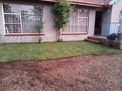 First Phase Instant Lawn