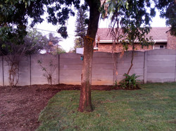 Landscaping Instant Lawn Installed